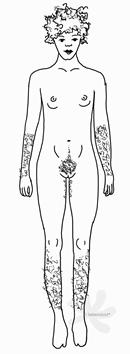 Die Person hat einen weiblich erscheinenden, sehr schlanken Körper mit Behaarung an den Beinen, an den Armen und am Venushügel. Die Achseln sind rasiert. Die Person hat eher kleine Brüste und stark gelocktes Haar, welches vom Kopf absteht.