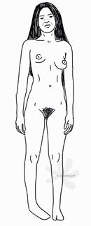 Ein weiblicher, sehr schlanker Körper mit einem flachen Bauch und langen Gliedmaßen. Bis auf den Venushügel und den Kopf ist der Körper komplett enthaart. Die Intimhaare und die äußeren Scheidenlippen verdecken die inneren Scheidenlippen sowie die Klitoris komplett. Die Person trägt sehr lange, dunkle Haare am Kopf. Eine Brust ist eher klein, die andere ausgeprägter und größer.