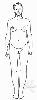 Eine Person die nicht eindeutig weiblich oder männlich erscheint und einen schlanken Körper und kurze Haare auf dem Kopf hat. Auf den Wangen, der Oberlippe und dem Kinn wächst ein Bart. Bis auf einen schmalen Streifen Haare am Venushügel ist der restliche Körper rasiert oder enthaart. Die Person hat einen runden Bauch und zwei mittelgroße, ebenfalls runde Brüste.