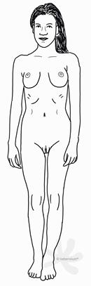 Eine sehr schlanke, weibliche Person mit einem eher knochigen Körperbau und sichtbarer Taille. Die Scheidenlippen und die Klitoris sind im Stehen sichtbar und die Person hat außer den langen Haaren am Kopf keine sichtbaren Haare am Körper. Die Brüste sind eher groß und rund. Darunter sind die Rippenbögen angedeutet.