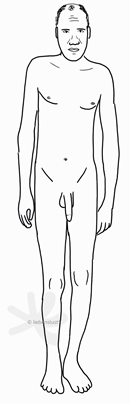 Eine eher ältere, männliche Person mit einigen Falten auf der Stirn und schütterem, kurzem Kopfhaar. Die Person ist eher hager und eine Schulter hängt tiefer als die andere. Die Gliedmaßen sind lang und sehr schlank. Auch das Becken wirkt auffallend schmal. Die Person hat einen Penis und Hoden und außer am Kopf hat die Person nirgends sichtbare Haare.